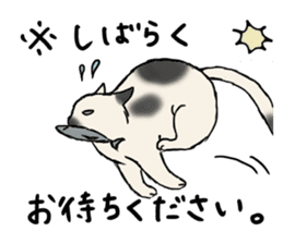Individual cats sticker #5615911