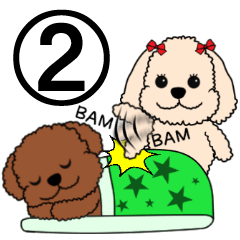 Mogu and Marco of toy poodles2 (English)