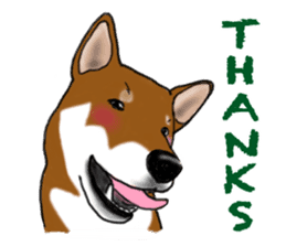 Shiba Inu Momo & his Friends in English sticker #5706409