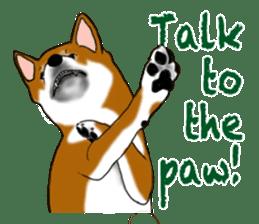 Shiba Inu Momo & his Friends in English sticker #5706417