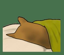 Shiba Inu Momo & his Friends in English sticker #5706422