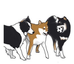 Shiba Inu Momo & his Friends in English sticker #5706424