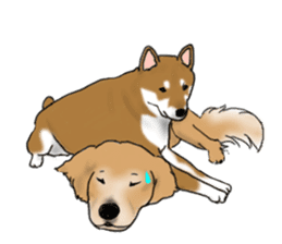Shiba Inu Momo & his Friends in English sticker #5706427