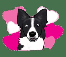 Shiba Inu Momo & his Friends in English sticker #5706430