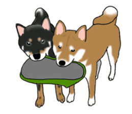 Shiba Inu Momo & his Friends in English sticker #5706433