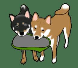 Shiba Inu Momo & his Friends in English sticker #5706433