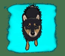 Shiba Inu Momo & his Friends in English sticker #5706435