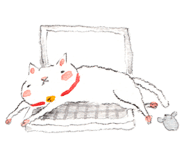 Easy going white cat sticker #5708748