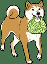 Shiba Inu, the brushwood dog from Japan sticker #5717020