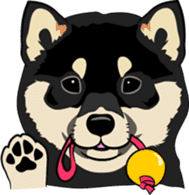 Shiba Inu, the brushwood dog from Japan sticker #5717024
