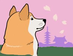 Shiba Inu, the brushwood dog from Japan sticker #5717025