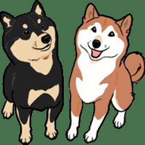 Shiba Inu, the brushwood dog from Japan sticker #5717027