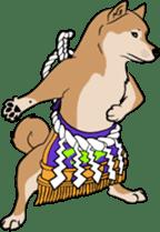 Shiba Inu, the brushwood dog from Japan sticker #5717028