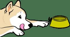 Shiba Inu, the brushwood dog from Japan sticker #5717048