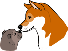 Shiba Inu, the brushwood dog from Japan sticker #5717051
