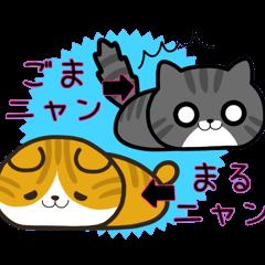 GOMA Nyan and MARU Nyan