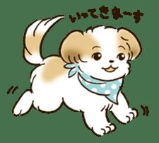 I Love Shih Tzu sticker #5740211