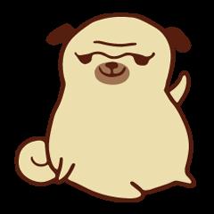Gappy the Pug