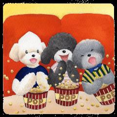 Parti poodle Latte's family & friends