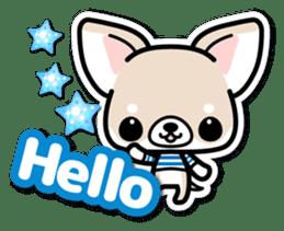 Chihuahua 3D Sticker ( English ) sticker #5759292