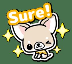 Chihuahua 3D Sticker ( English ) sticker #5759295