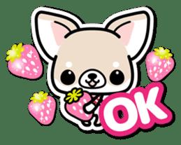 Chihuahua 3D Sticker ( English ) sticker #5759296