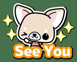 Chihuahua 3D Sticker ( English ) sticker #5759298
