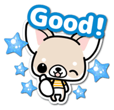 Chihuahua 3D Sticker ( English ) sticker #5759300
