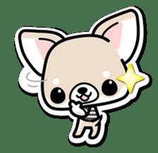 Chihuahua 3D Sticker ( English ) sticker #5759307