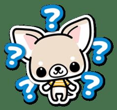 Chihuahua 3D Sticker ( English ) sticker #5759311
