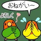 """Peach-faced Lovebird """"Kozakura-chi"""" sticker #5770087"""