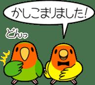 """Peach-faced Lovebird """"Kozakura-chi"""" sticker #5770092"""