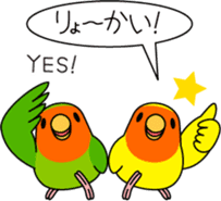 """Peach-faced Lovebird """"Kozakura-chi"""" sticker #5770093"""