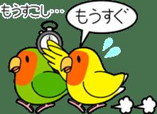 """Peach-faced Lovebird """"Kozakura-chi"""" sticker #5770094"""