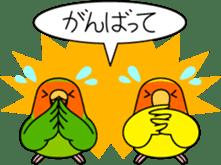 """Peach-faced Lovebird """"Kozakura-chi"""" sticker #5770099"""