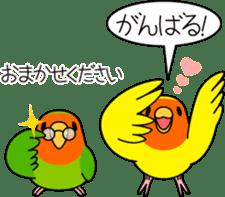 """Peach-faced Lovebird """"Kozakura-chi"""" sticker #5770100"""