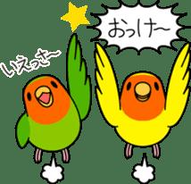 """Peach-faced Lovebird """"Kozakura-chi"""" sticker #5770101"""
