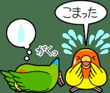 """Peach-faced Lovebird """"Kozakura-chi"""" sticker #5770104"""