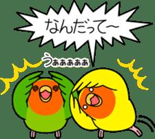 """Peach-faced Lovebird """"Kozakura-chi"""" sticker #5770105"""