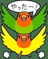 """Peach-faced Lovebird """"Kozakura-chi"""" sticker #5770107"""