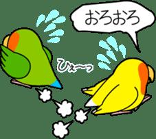 """Peach-faced Lovebird """"Kozakura-chi"""" sticker #5770108"""