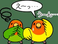 """Peach-faced Lovebird """"Kozakura-chi"""" sticker #5770111"""