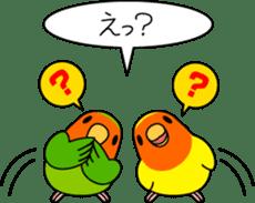"""Peach-faced Lovebird """"Kozakura-chi"""" sticker #5770112"""