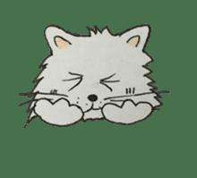 Kool Katz 1 sticker #5799082