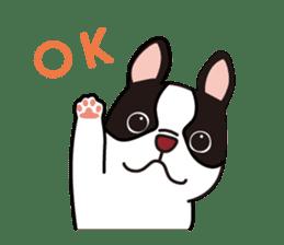 French Bulldog BOO (pied) sticker #5808488