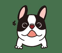 French Bulldog BOO (pied) sticker #5808492
