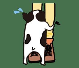 French Bulldog BOO (pied) sticker #5808506