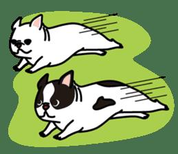 French Bulldog BOO (pied) sticker #5808518