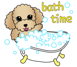 The Toy Poodle stickers sticker #5817105