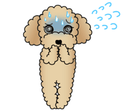 The Toy Poodle stickers sticker #5817109